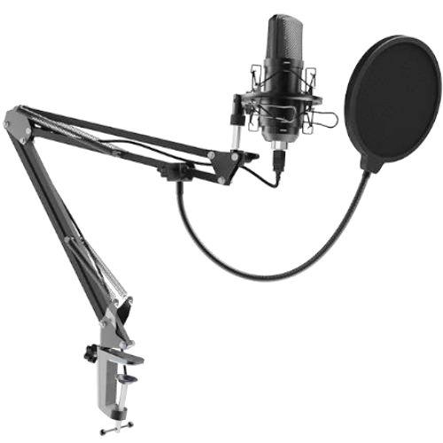 Микрофон Ritmix RDM-169 USB штатив струбцина ветрозащита